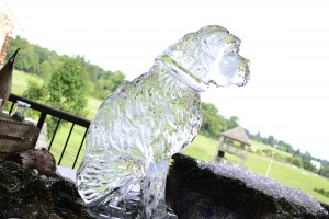 Bulldog Ice Sculpture