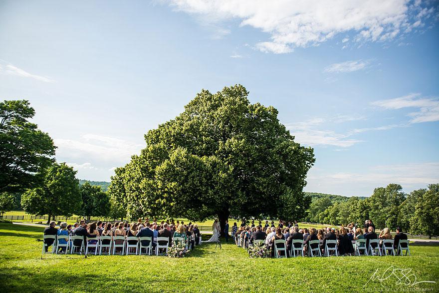 Outdoor Wedding Ceremony at Linden Tree at Springton Manor Farm